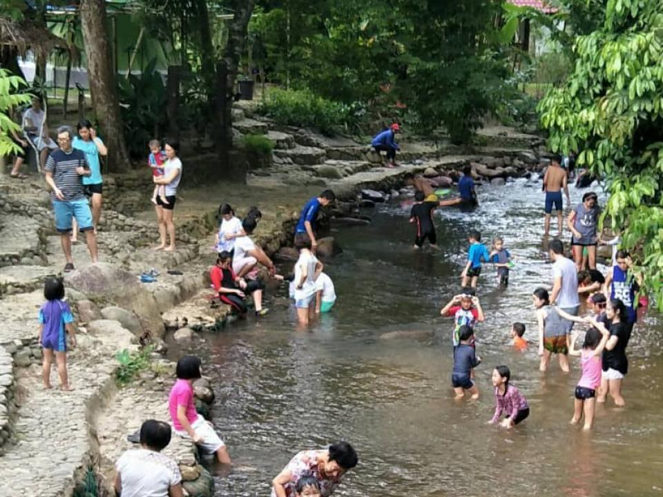 Free - River Fun Activity